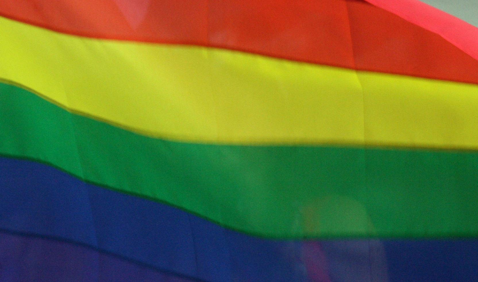Onbekenden vernielen homozebrapad Leiden