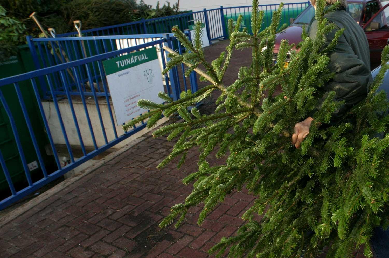 kerstboom-tuinafval