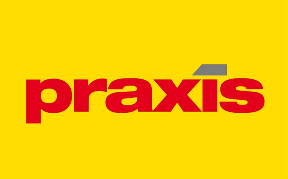 Logo van Praxis   Praxis