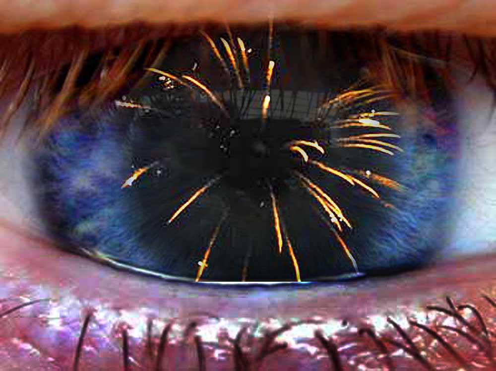 Foto van vuurwerk en oog   Archief EHF
