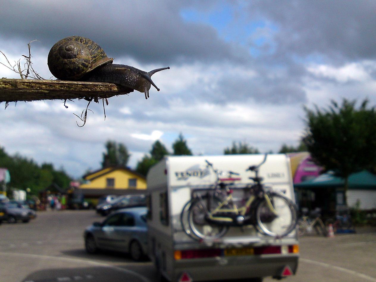 Nederlanders gaan weer massaal op vakantie