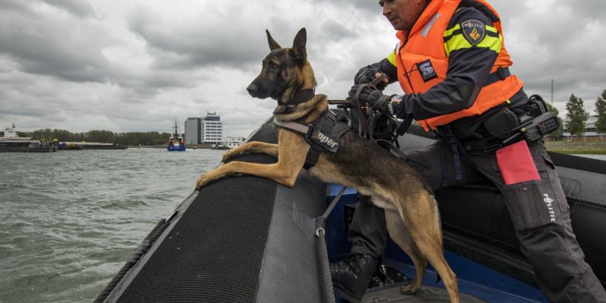 Grote oefendag voor tientallen politiehonden