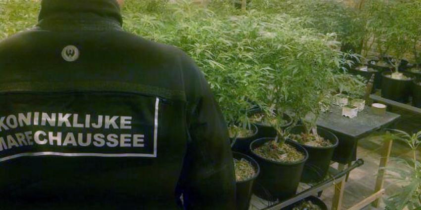 Arrestaties in Groningen tijdens drugsonderzoek