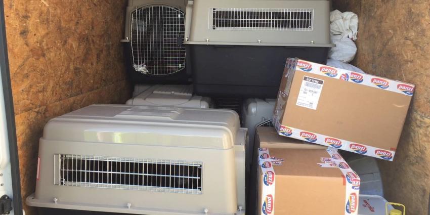 NVWA neemt 17 honden in bewaring