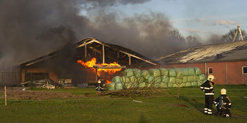 Grote brand doodt 4000 biggen en 700 varkens