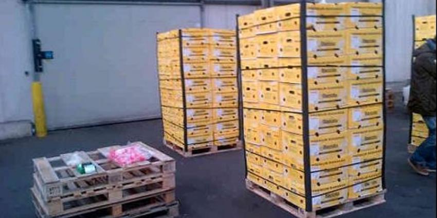 Acht aanhoudingen na vondst 1800 kg cocaïne