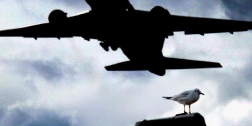 Meer herry van vliegtuigen Lelystad Airport dan voorgespiegeld