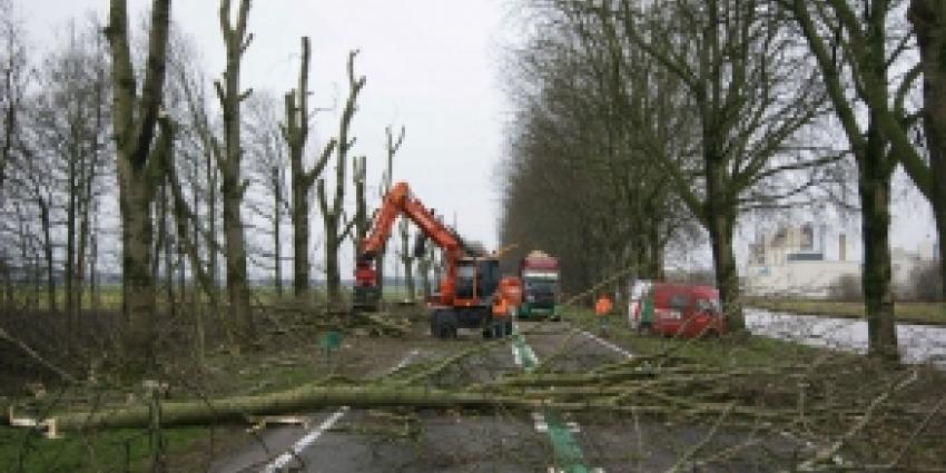 N33 tussen Meeden en Veendam afgesloten om bomenkap