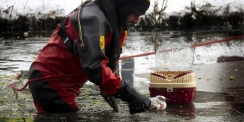 Brandweer redt op ijs vastgevroren meeuw