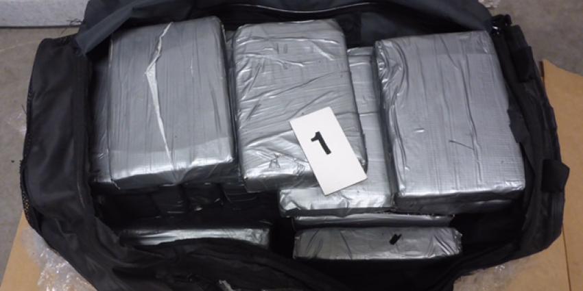 Douane vindt 50 kilo cocaïne tussen vleermuizenmest