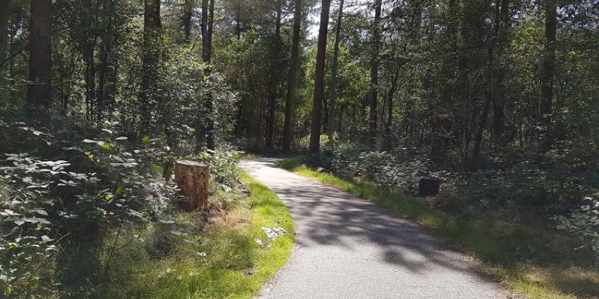 Man (41) aangehouden voor zedenmisdrijf in Overloonse bossen