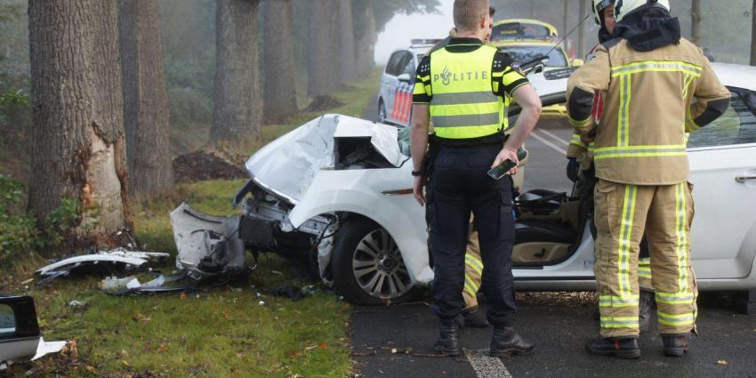 Automobilist botst tegen boom in Meppen