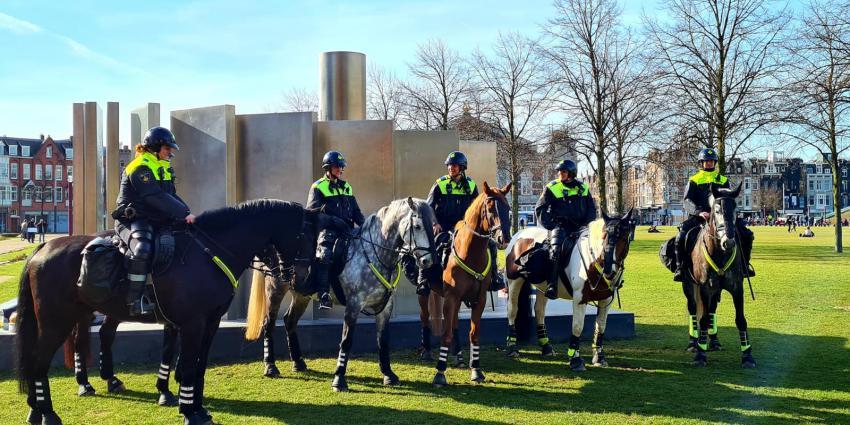 Politiepaarden op Museumplein