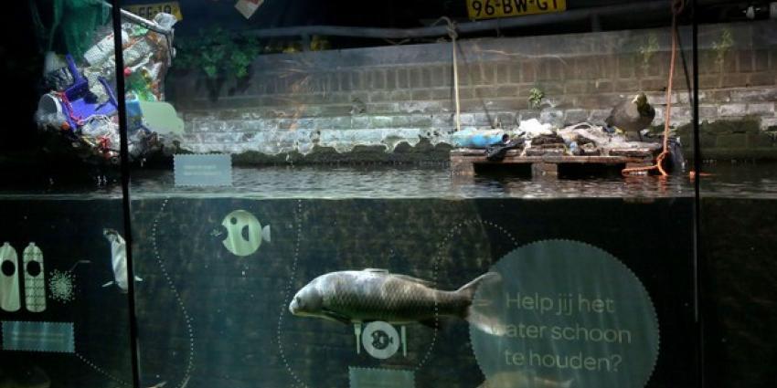 Amsterdamse gracht in ARTIS-Aquarium vernieuwd