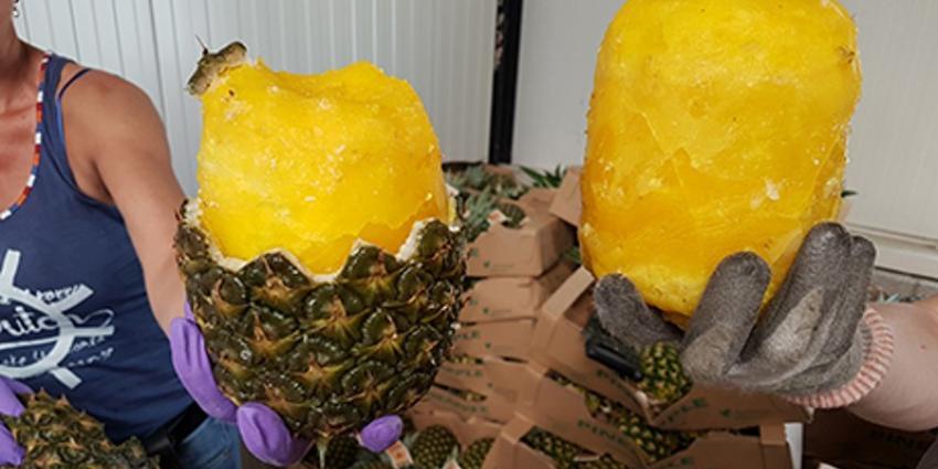 Politie vindt 68,5 kilo cocaïne in ananassen