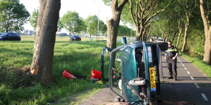 Auto crast tegen boom