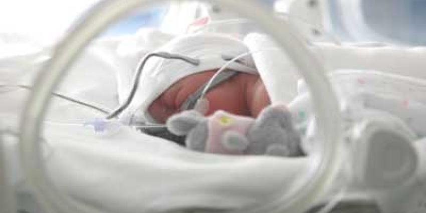 Foto van baby in couveuse | Archief EHF