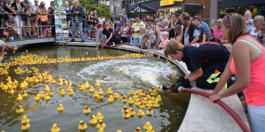 Duizenden badeenden zwemmen door Cascade in Hoogeveen