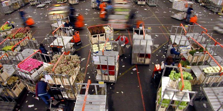 Ruim kwart minder bloemenexport door corona-crisis