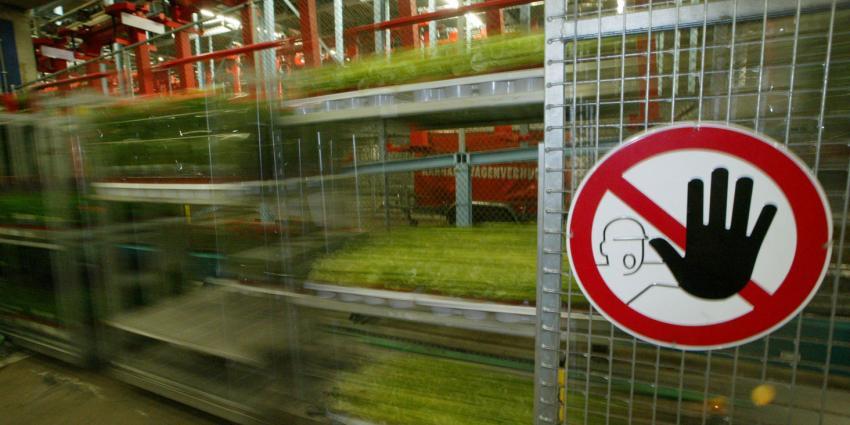 Rusland dreigt met een importstop van alle bloemen uit Nederland