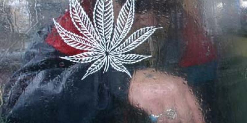 Mensenrechten geeft ruimte voor vernieuwing cannabisbeleid