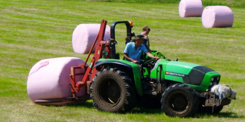 Boer druk met 'marshmallows'