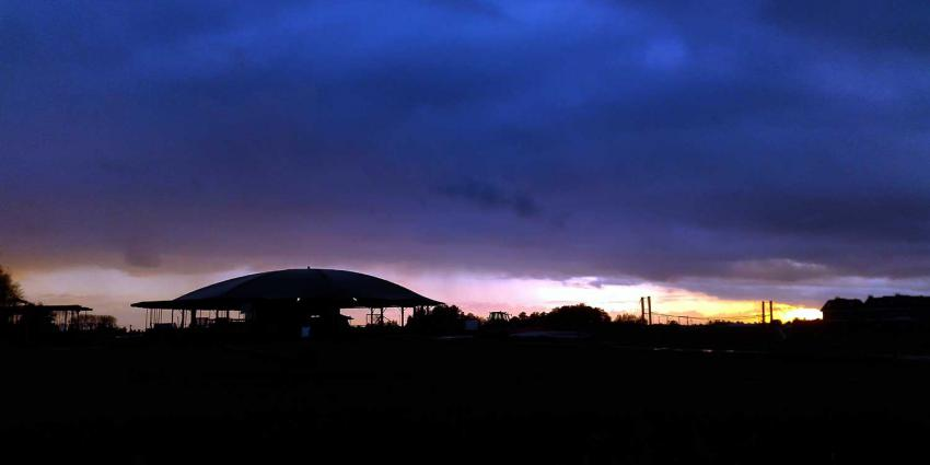 boerderij-tegenlicht-paraplu-koe