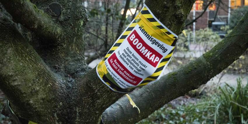 Milieudefensie merkt landelijk honderden bomen voor de kap