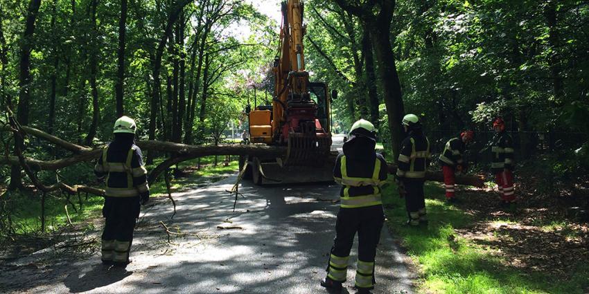 Foto van omgewaaide boom brandweer | Sander van Gils | www.persburosandervangils.nl