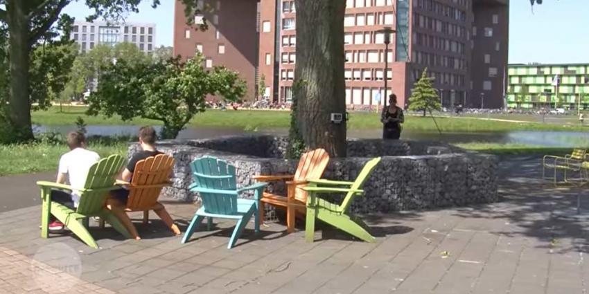 'Nederland heeft een boom die spreekt'