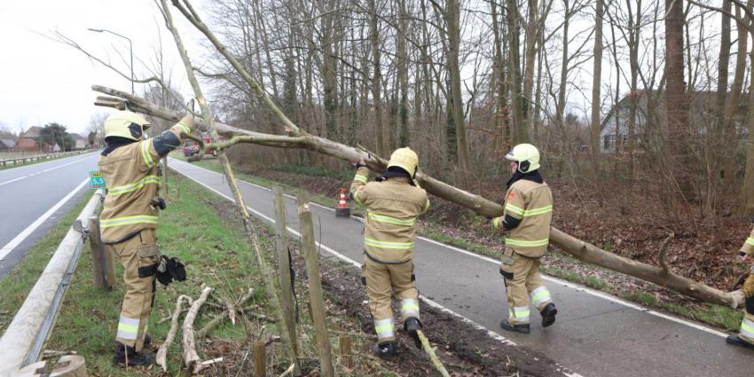 boom-wind-brandweer