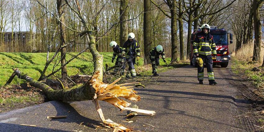 Paasstorm laat spoor van vernielingen achter in Schijndel