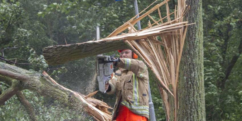 Pas op met verzwakte bomen tijdens zomerstorm