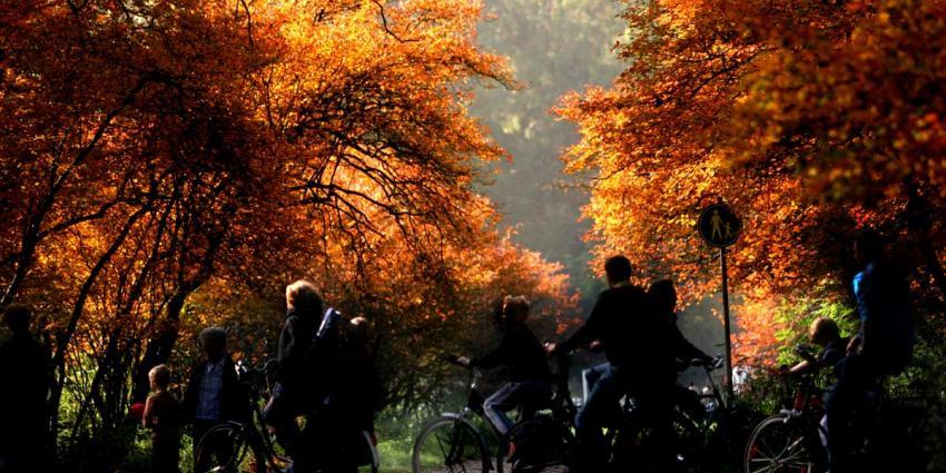 bos-herfst-kleur-fiets