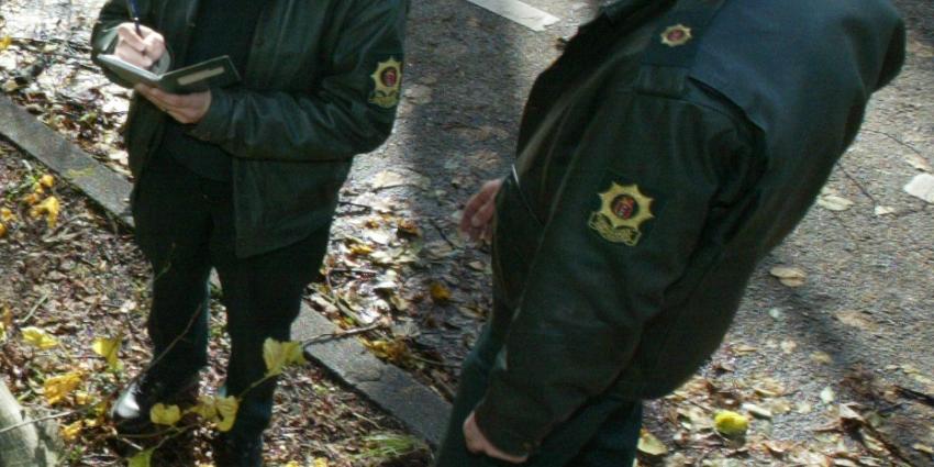 Help boswachter mee met verkrachters tellen