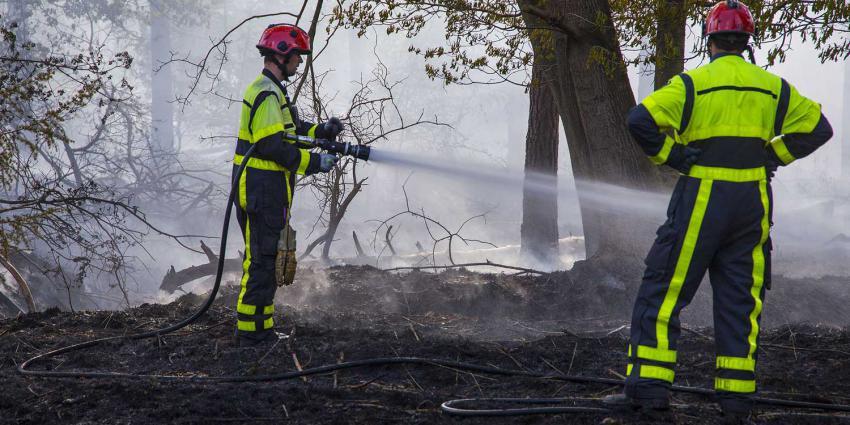 bosbrand-blussen