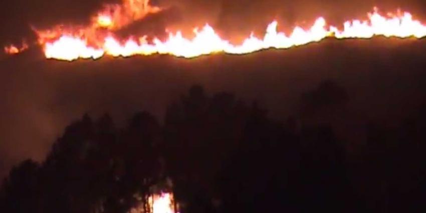 Doden door natuurbranden in Portugal en Spanje