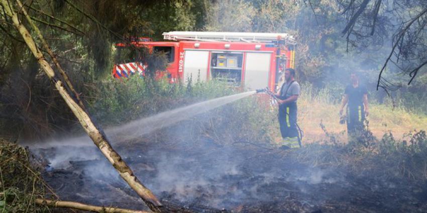 Kleine bosbrand in Boxtel moeilijk te lokaliseren maar vakkundig gedoofd door brandweer