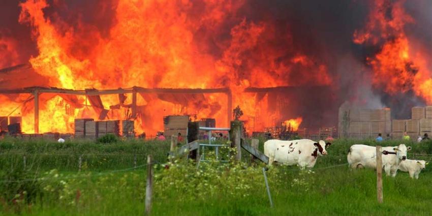 Foto van brand palletbedrijf Kampen   Hennie Joesten   www.protief.nl