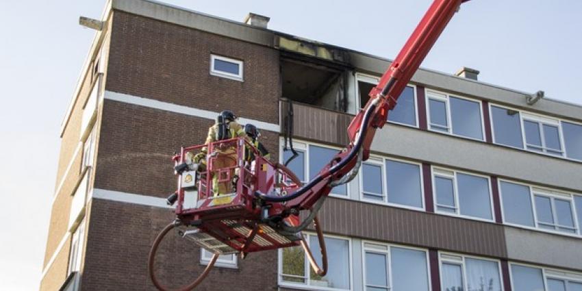 Konijn overleeft grote brand flat niet