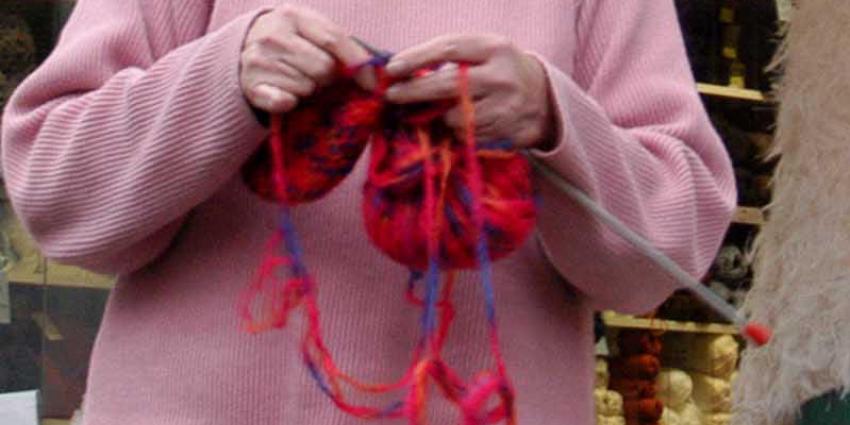 'Heel Holland breit'