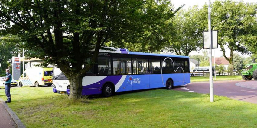 bus-bocht-gras