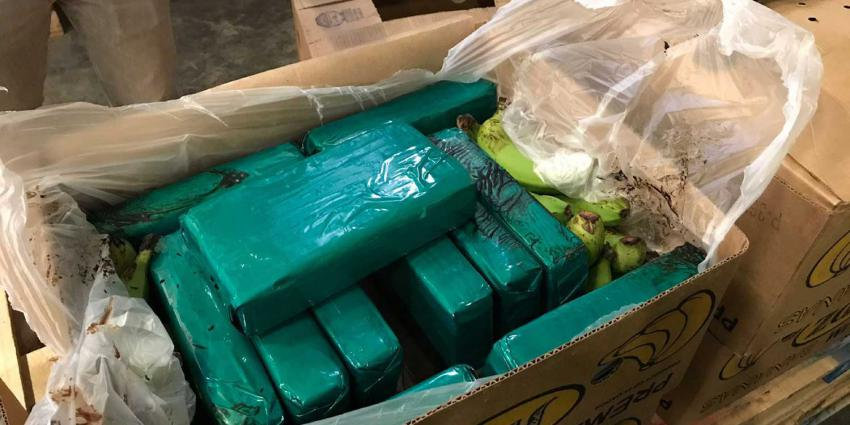 Voor 9 miljoen euro aan cocaïne tussen de bananen aangetroffen