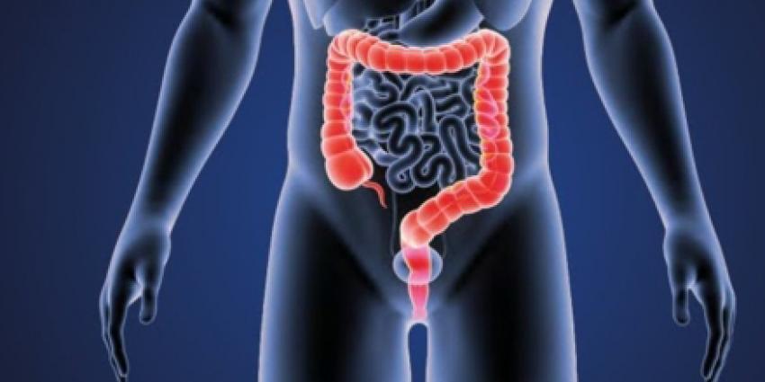 Lynch-syndroom PMS2-mutatie alleen verhoogd risico darm- en baarmoederkanker