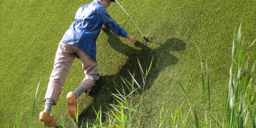 Nieuw Nationaal Waterplan moet Nederland beschermen