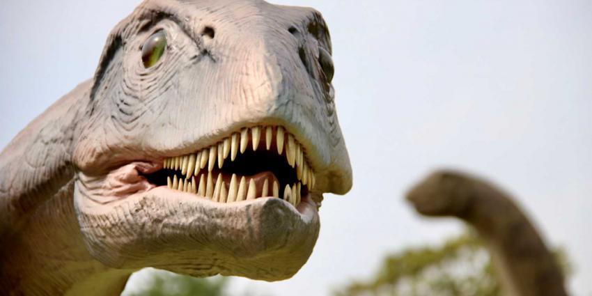 Levensechte bewegende dino's in Jurassic Kingdom in Schiedam