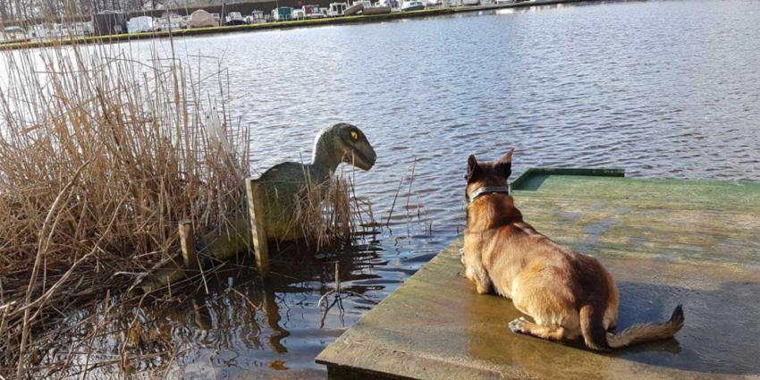 Vondst dinosaurus Almelo blijkt 'opgeblazen' verhaal