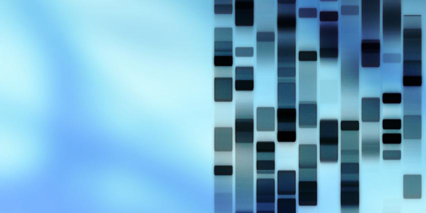 DNA daterende methode