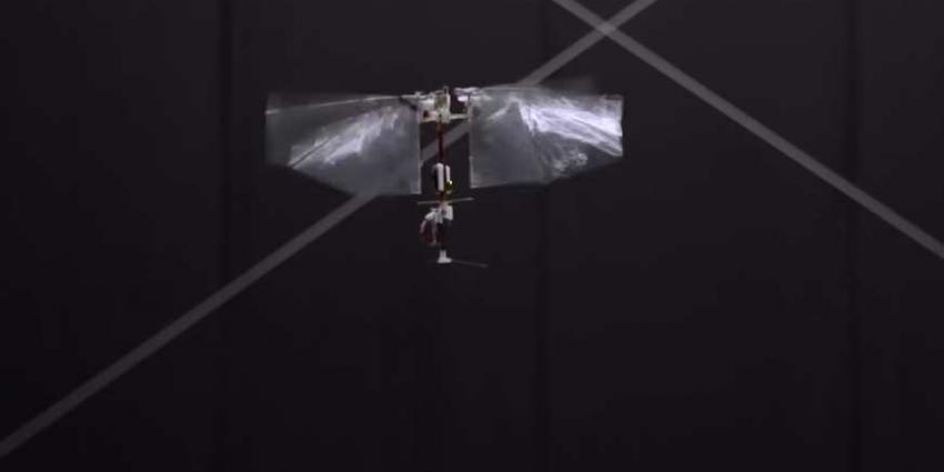 Delfse drone imiteert insectenvlucht