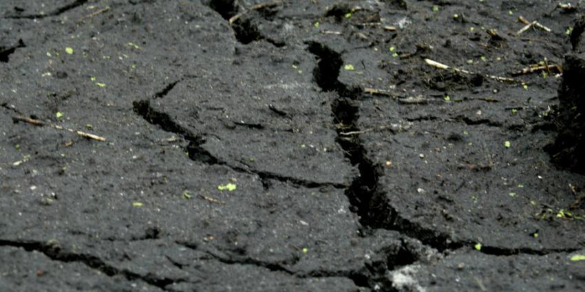 Oxfam Novib: Afrika verliest miljarden door belastingparadijzen